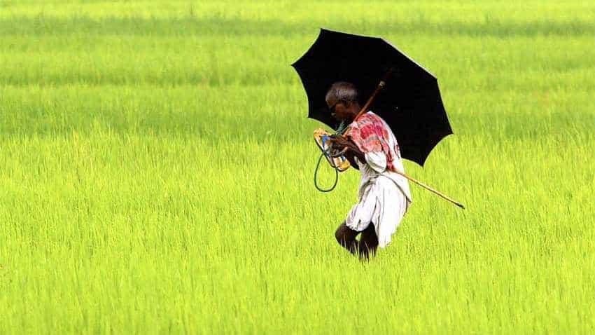 India has scope for cutting food, fertiliser subsidies: IMF