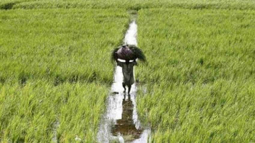 Hike farmer income support, raise peak tax threshold: Ficci