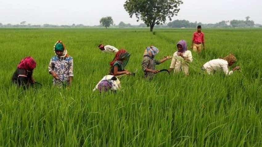 Rythu Bharosa scheme: Farmers in Andhra Pradesh to get Rs