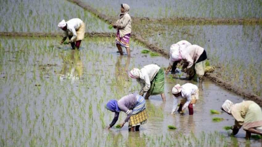 PM-Kisan Pension: Farmers' contribution to be Rs 100/month