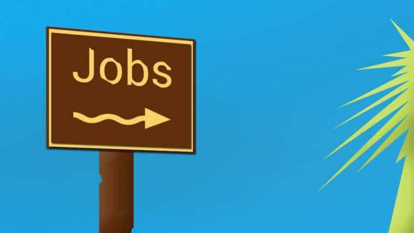 This  government job pays Rs 1,60,000! 203 vacancies available; apply this way to grab vacancy