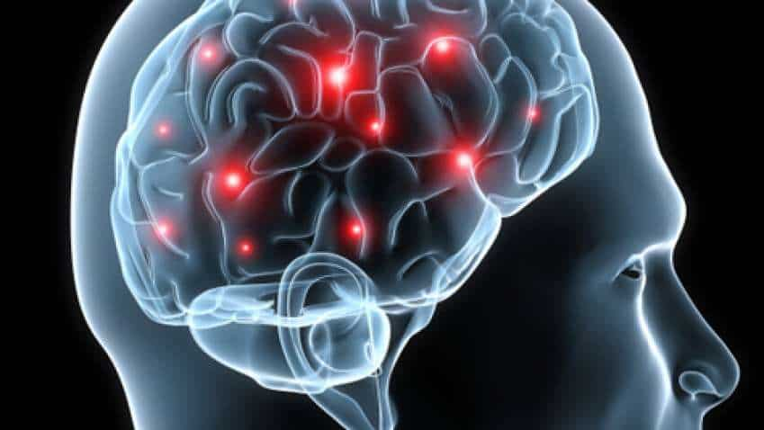 Your brain: Time of day linked to decrease in activity in specific regions, says study