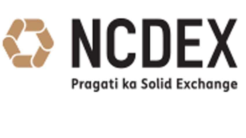 NCDEX IPO News: Green signal from Sebi for Rs 500-cr initial public offer - All details here