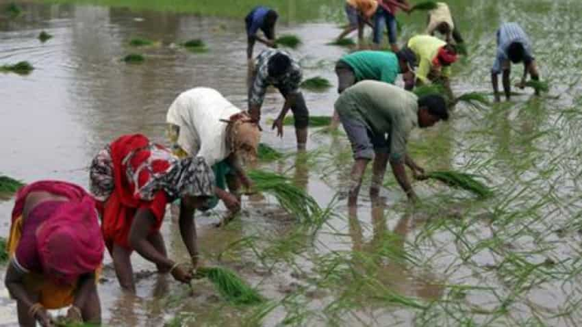 Heavy monsoon rains speed up crop planting in India