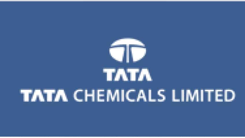 Tata Chemical – Annual Report analysis