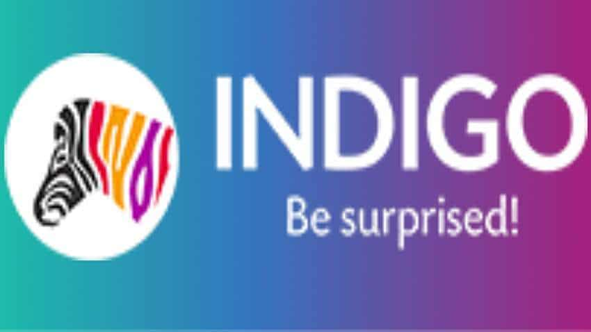 Indigo Paints IPO allotment status: Shortest way! Know subscription, shares directly from these two links