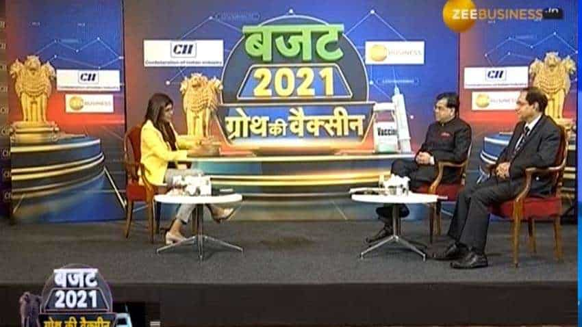 Privatisation policy will change the way the economy works: TV Somanathan