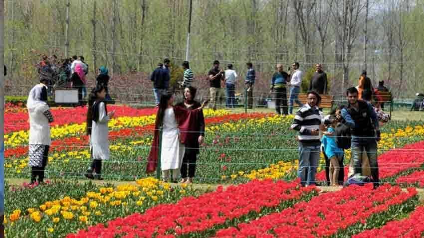 Spring blooms as mercury rises in Kashmir