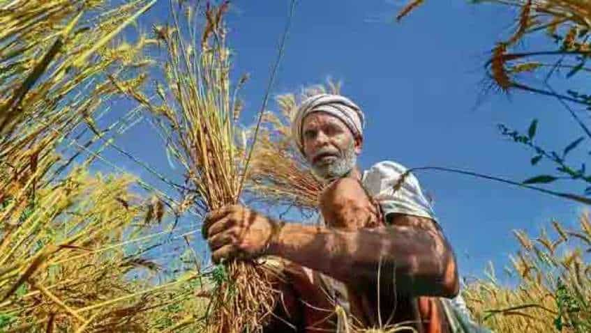 PM Kisan instalment date: 8th instalment likely by May 10—enroll yourself this way to get Rs 6,000 annual benefit