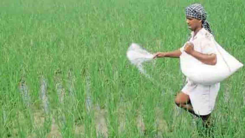 GOOD NEWS! Subsidy on DAP fertiliser hiked by 140% ; farmers to get  DAP bag for Rs 1200 instead of Rs 2400