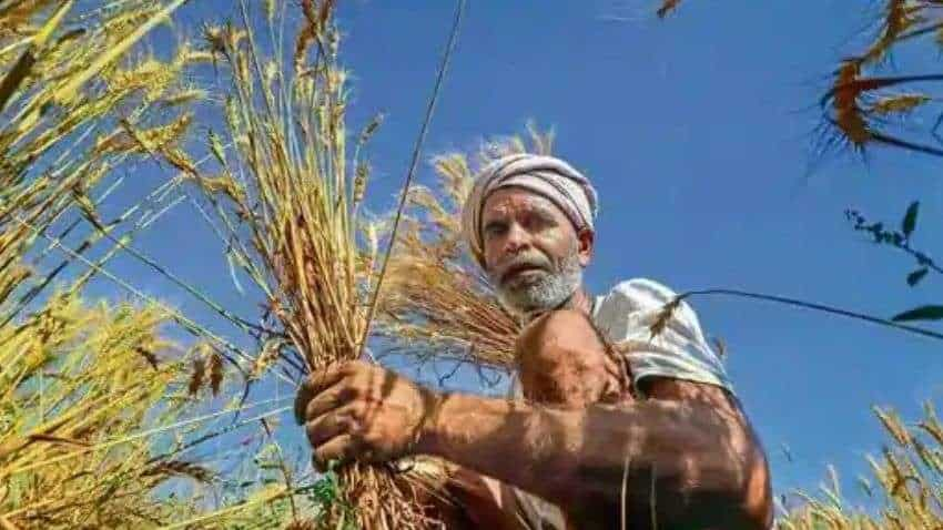 PM Kisan Scheme Mobile App: Check status online - HERE IS HOW! Farmer beneficiaries ALERT - Rs 20k crore to over 9.5 cr farmers in 8th installment