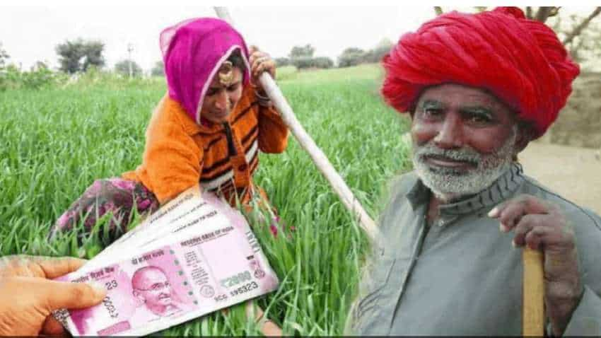 PM Kisan Samman Nidhi Yojana: How many members in a family can claim THIS benefit? Who can't avail? See full list