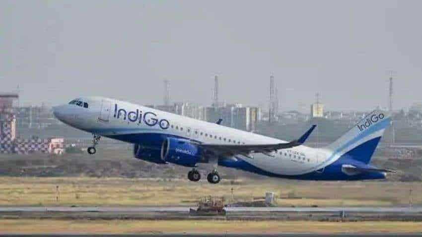 IndiGo 6E Double Seat Service: Stress-free flying experience! Know eligibility, booking, cancellation and other details here