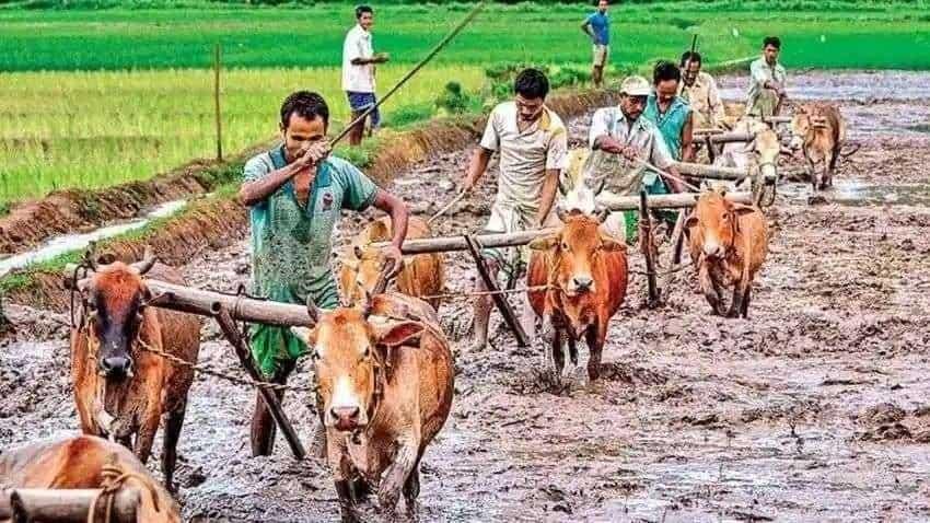 PM Kisan Samman Nidhi Yojana: Get registered using new farmer registration option - Check process